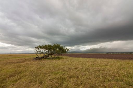 the man to send rain clouds The man to send rain clouds has 31 ratings and 2 reviews andrea said: určite  tam je nejaký skrytý význam, len ja som to nepochopila zase raz tak háda.